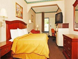 Comfort Suites Hotel Knoxville (TN) - Guest Room