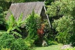 Phang Nga River Lodge Hotel - Hotell och Boende i Thailand i Asien
