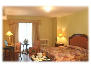 Millennium Plaza Hotel - Room type photo