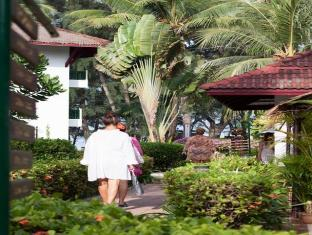 Amora Beach Resort Phuket - Garden