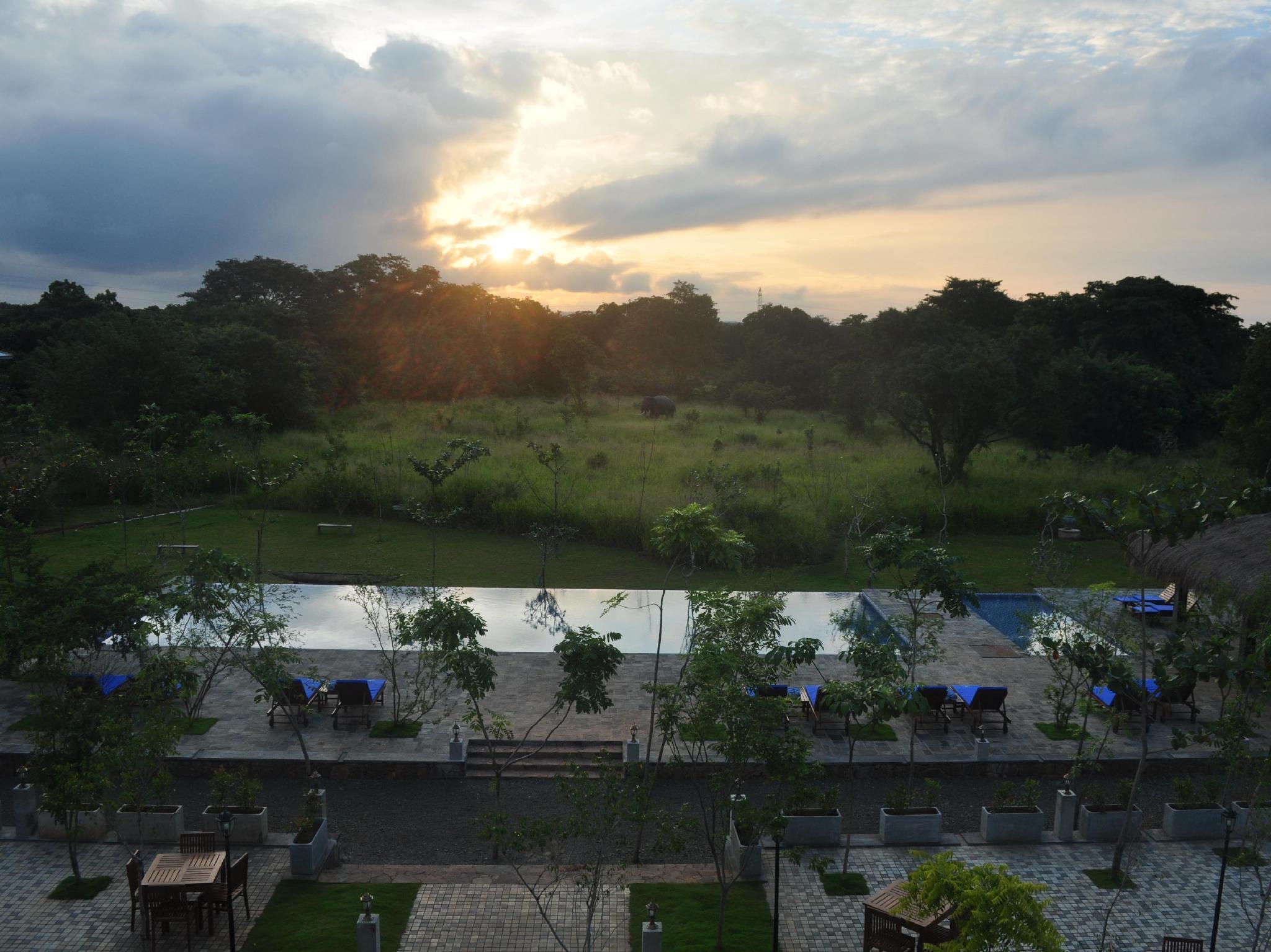 Amaara Forest Hotel Sigiriya  - Hotels and Accommodation in Sri Lanka, Asia