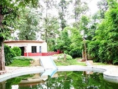 Tiger woods Kanha Resort   Spa - Hotell och Boende i Indien i Kanha