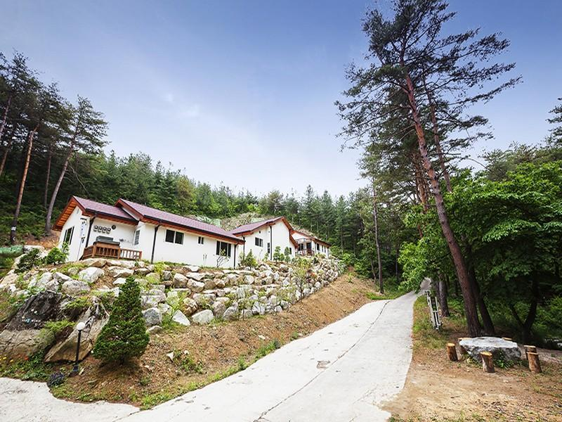 Softwind Sokcho Pension - Hotels and Accommodation in South Korea, Asia