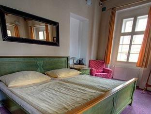 Hotel U Tri Bubnu Prague - Guest Room