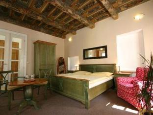 Hotel U Tri Bubnu Praag - Gastenkamer