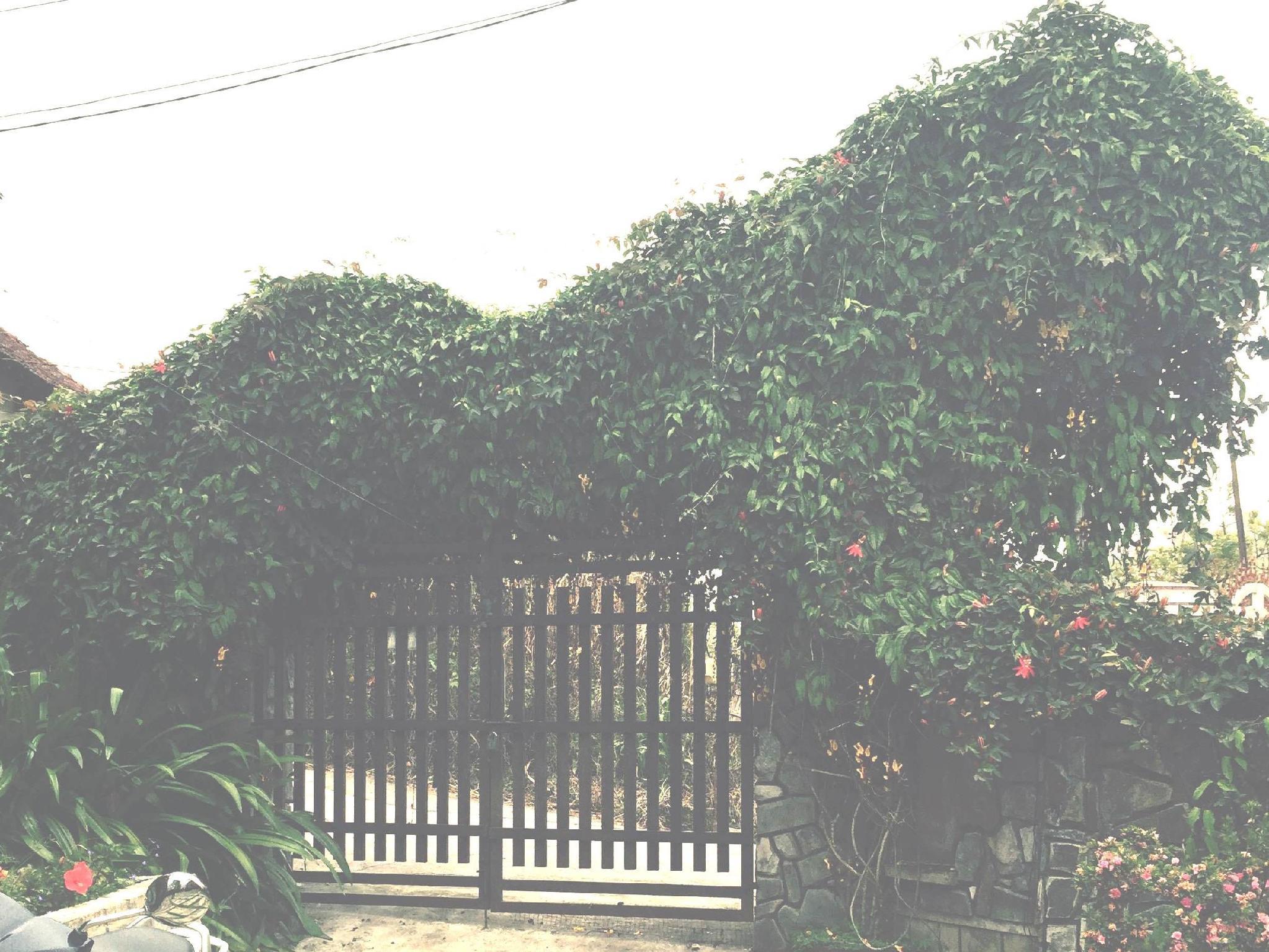 Villa Van Kiep Dalat - Hotels and Accommodation in Vietnam, Asia
