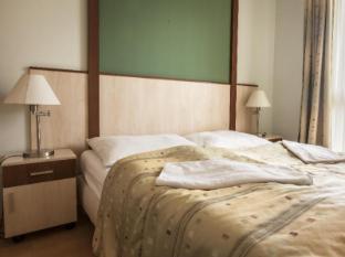 Premium Apartment House Budapest - Guest Room