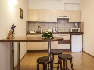 Premium Apartment House Budapest - Kitchen