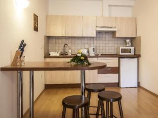 Premium Apartment House Budapest - Kitchen