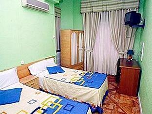 Hostal Alcazar Regis Madrid - Guest Room