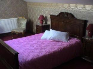 St. Peterburg Hotel بارنو - غرفة الضيوف