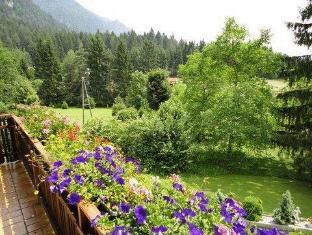 Pension Waldkrieber Hermagor - Garden