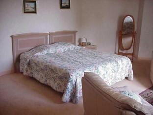 Arcantis Parc Hotel La Chapelle-Saint-Mesmin - Guest Room