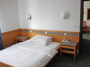 Hotel Alp Bovec - Guest Room