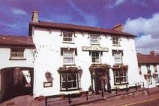 Emlyn Arms Hotel