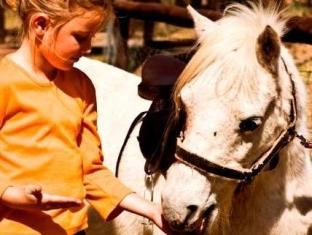 Tzaneen Country Lodge Tzaneen - Animal Touch and Feeding Farm