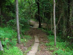 Tzaneen Country Lodge Tzaneen - Forest Walks at Debegeni Waterfalls
