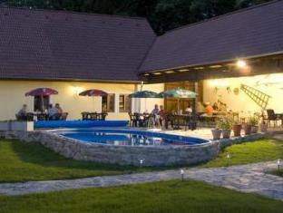 Pension U Staryho Dubu Hotel Jindrichuv Hradec - Swimming Pool