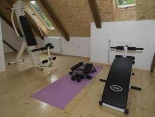 Pension U Staryho Dubu Hotel Jindrichuv Hradec - Fitness Room