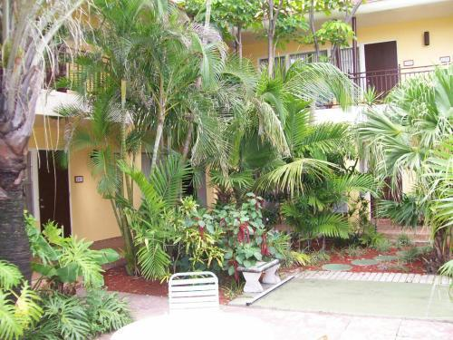 贝壳汽车旅馆 罗德岱堡 佛罗里达州 酒店周边高清图片
