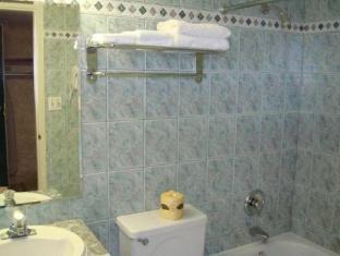 Capri Inn Hotel Saint-Catharines (ON) - Bathroom