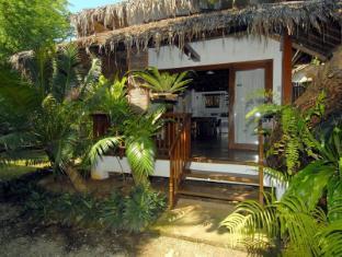 Philippines Hotel Accommodation Cheap | Blue Bayou Bungalows Boracay Island - Deluxe Bungalow
