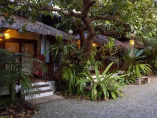 Philippines Hotel Accommodation Cheap | Blue Bayou Bungalows Boracay Island - Garden (Evening)