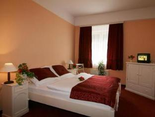 Hotel Alexandra Roztoky - Guest Room