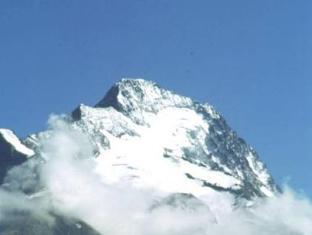 Hotel Les Flocons Les Deux Alpes - View