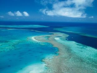 Hamilton Island Palm Bungalows Whitsundays - Great Barrier Reef