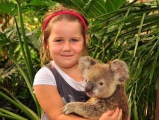 Hamilton Island Palm Bungalows Whitsundays - Breakfast with Koalas at the Wildlife Park