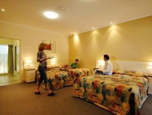 Mclaren Vale Motel and Apartments - More photos