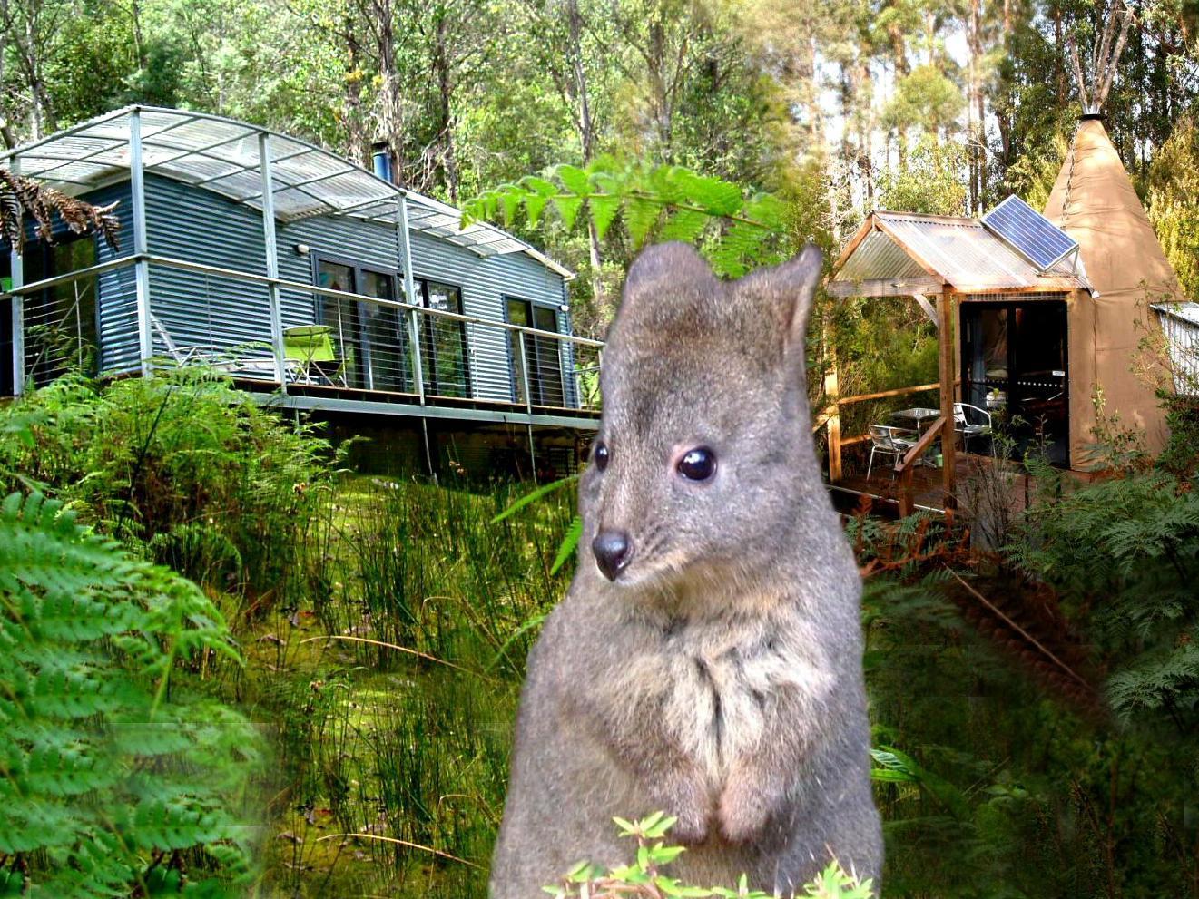 Huon Bush Retreats - Hotell och Boende i Australien , Huon Valley