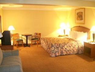 Best Western Tampico Hotel Tampico - Guest Room