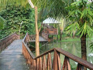 Sepilok Jungle Resort - More photos