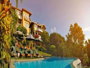 Amarela Resort بوهول - حمام السباحة