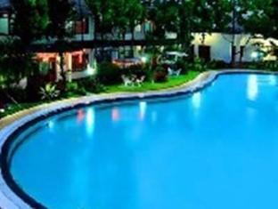Hotel Delamar Palasari Indah Puncak - Kolam renang