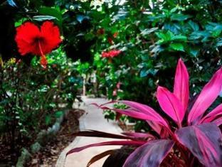 Green Tulum Hotel Tulum - Garden