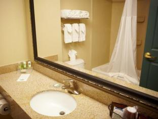 Country Inn & Suites By Carlson Grand Rapids East MI Grand Rapids (MI) - Bathroom