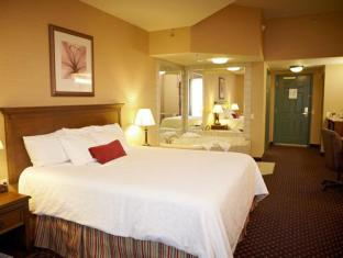 Country Inn & Suites By Carlson Grand Rapids East MI Grand Rapids (MI) - Suite Room