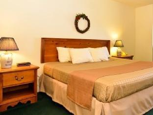 Best Western Cozy House & Suites Williamsburg (IA) - Guest Room