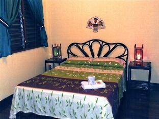 Moana Hotel Inn and Diving Center Puerto Princesa City - Big Room
