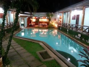 Moana Hotel Inn and Diving Center Puerto Princesa City - Swimming Pool