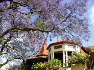 Melvin Residence Guest House Pretoria - Jacaranda flowers