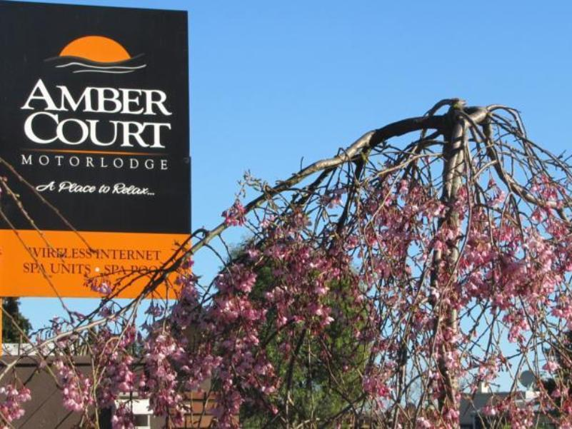 Amber Court Motel - Hotels and Accommodation in New Zealand, Pacific Ocean And Australia