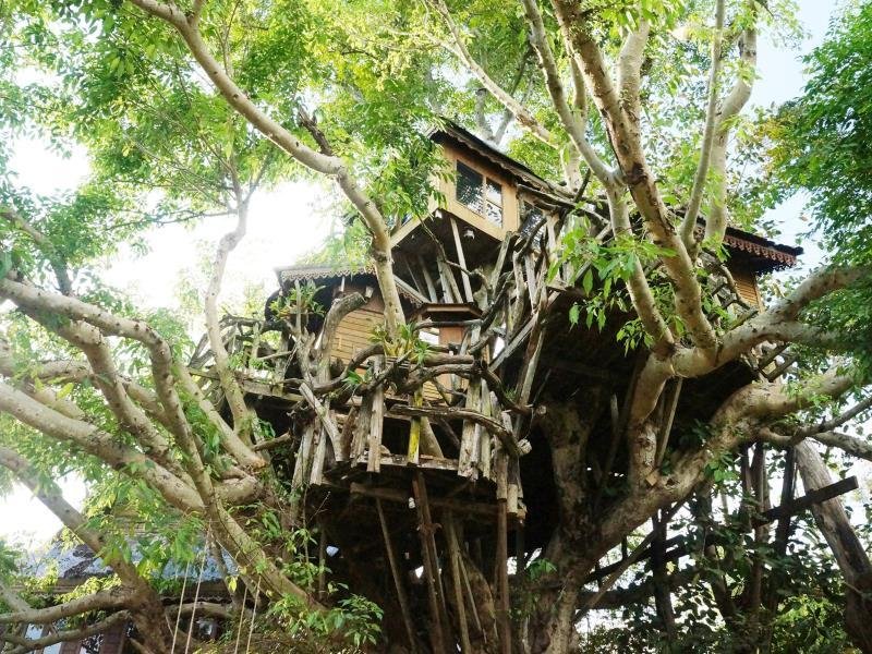 Pai Treehouse Resort - Hotels and Accommodation in Thailand, Asia