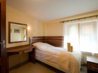 Villa Masoneria Guest House Lodz - Guest Room