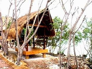 Pamilacan Island Paradise Hotel Bohol - Dintorni