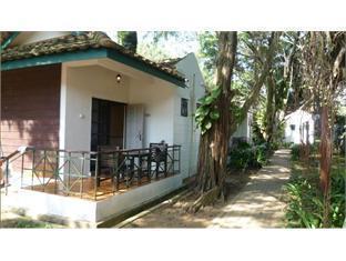 Residence Inn Cherating - Room type photo