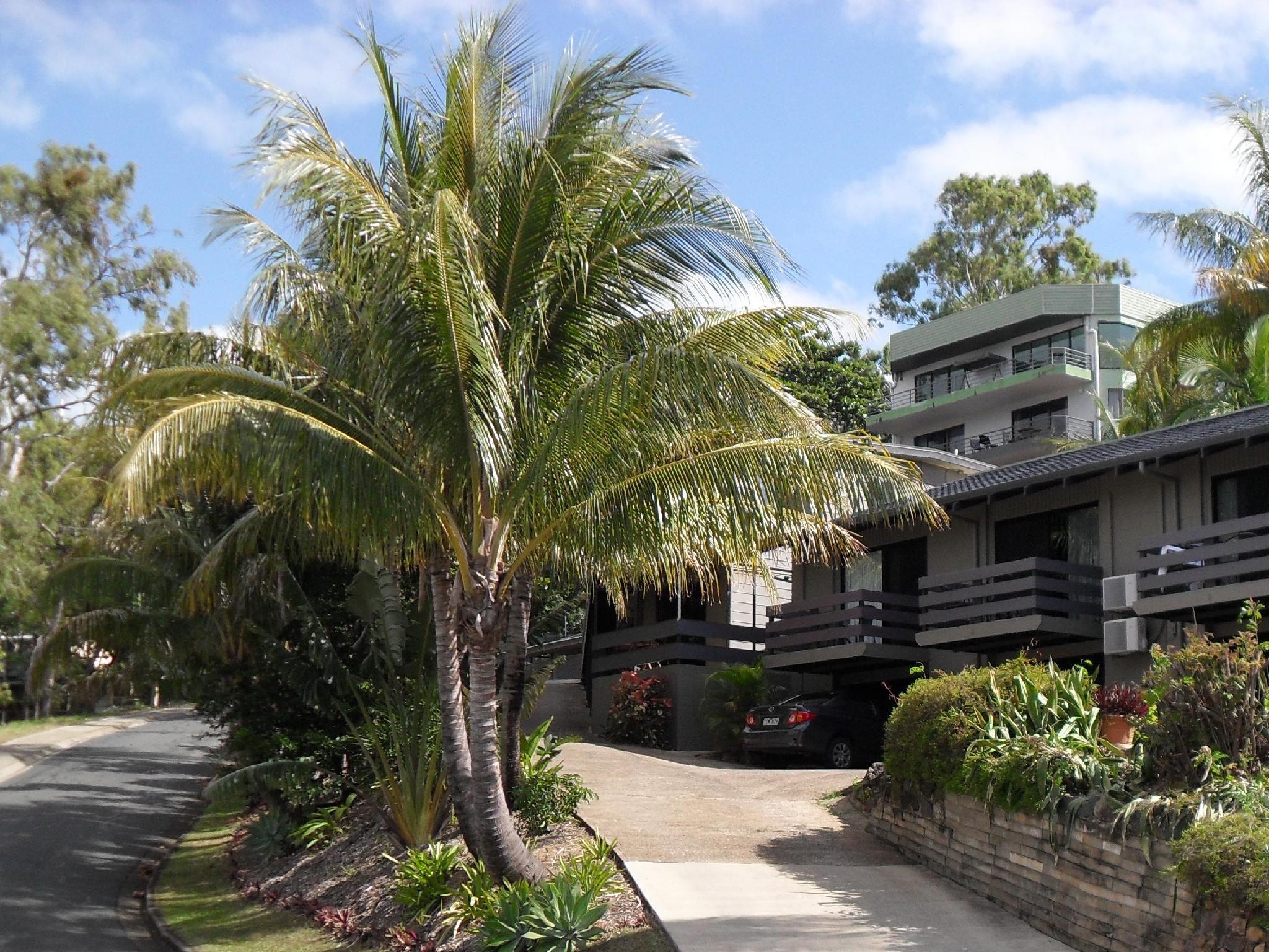 Airlie Beach Motor Lodge - Hotell och Boende i Australien , Whitsundays